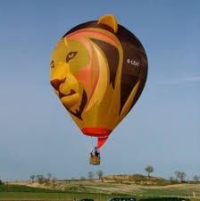 Longleat Lion Balloon
